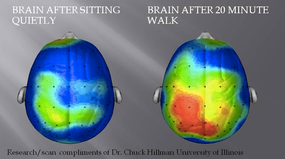 3025957-inline-i-1-what-happens-to-our-brains-when-we-exercise-and-how-it-makes-us-happier