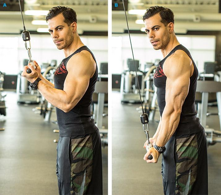 Sfaturi pentru un Triceps mai Mare